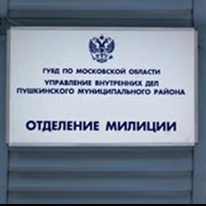 Отделения полиции Гайнов