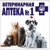 Ветеринарные аптеки в Гайнах